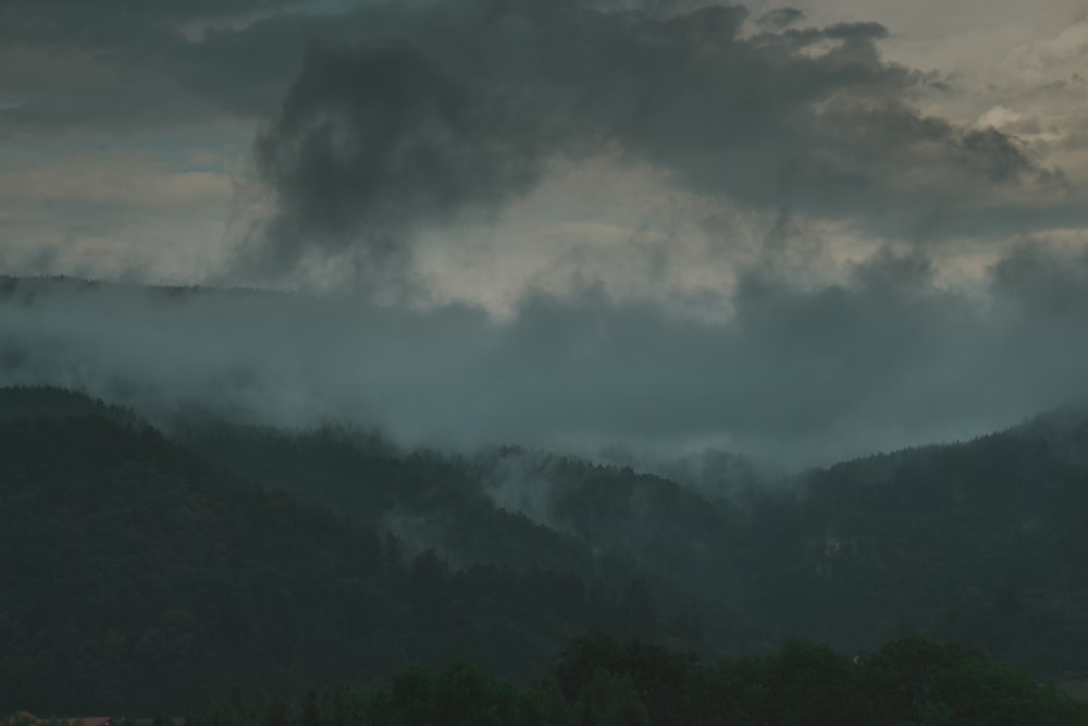 scenery of mountains covered with fog