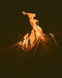 bonfire during night