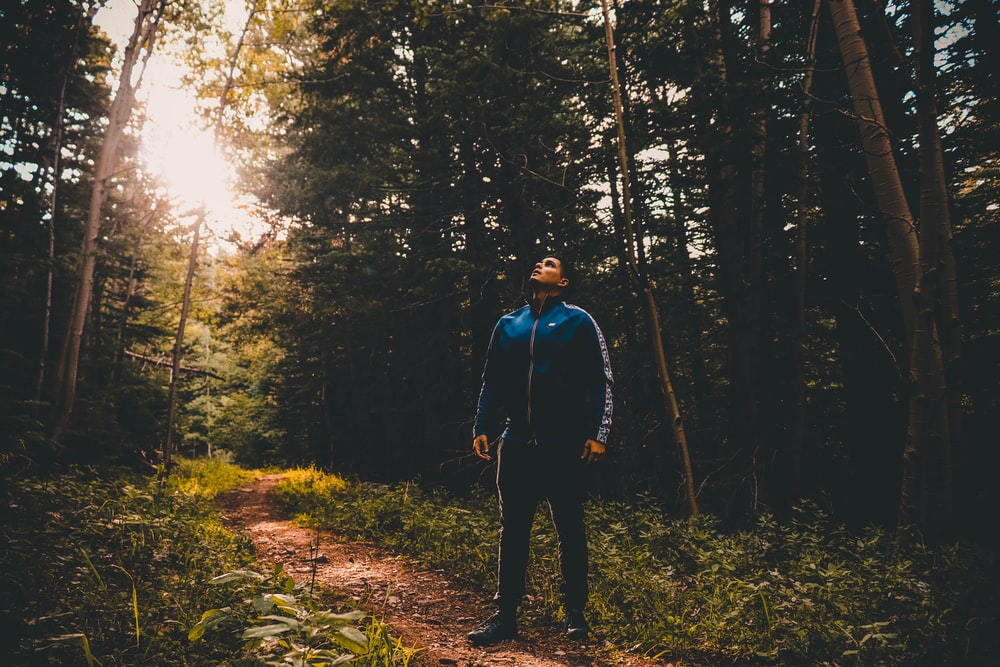 man standing near green trees during daytime