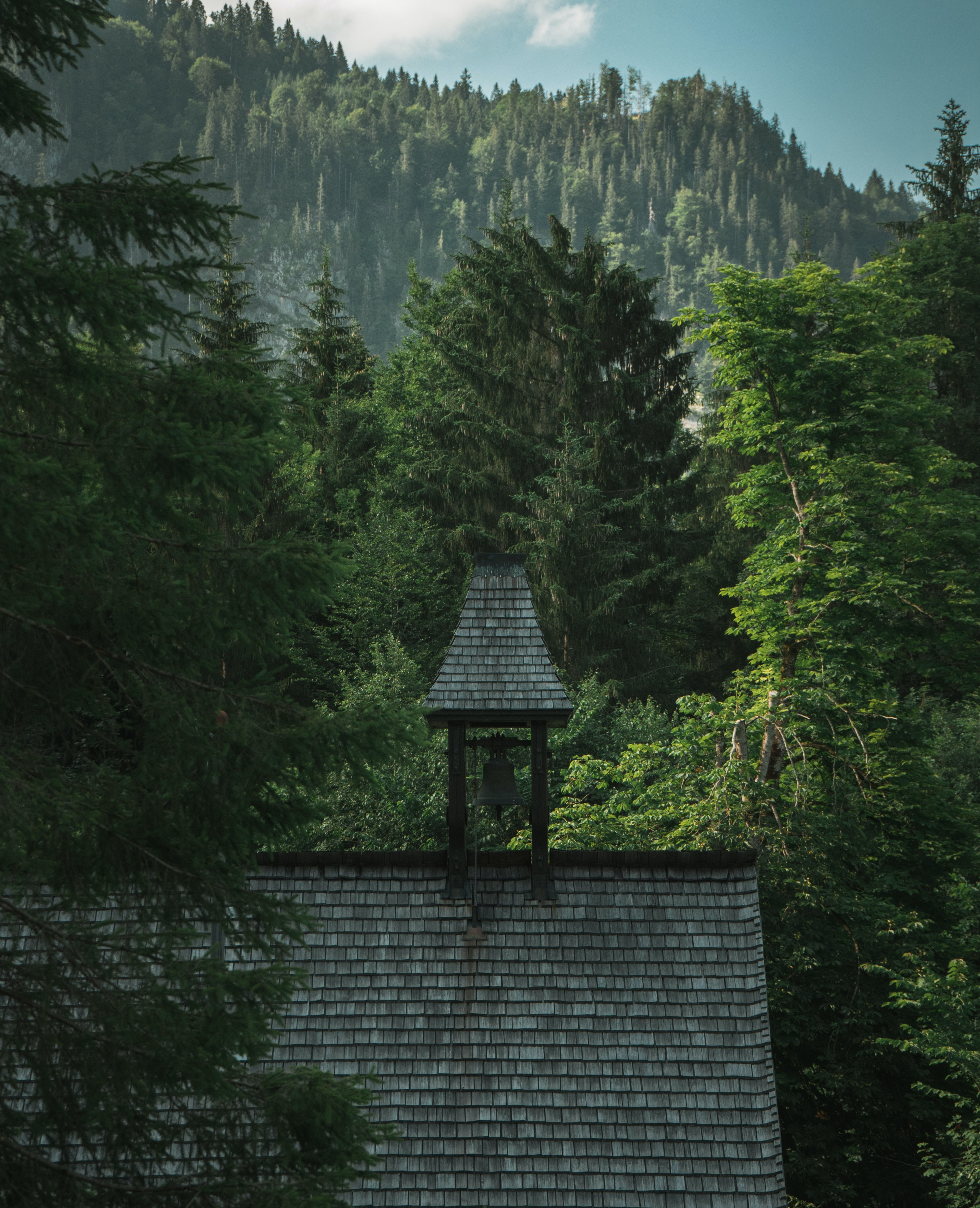 gray house beside green leafed trees