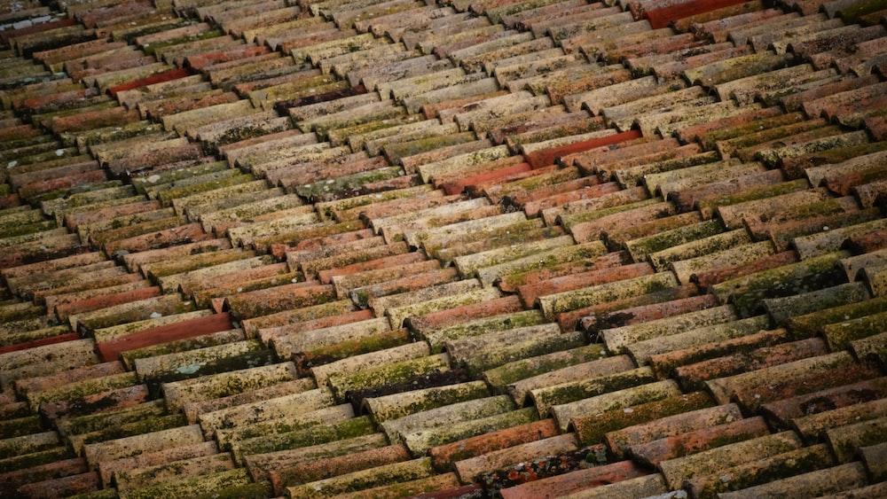 brown roof bricks at daytime