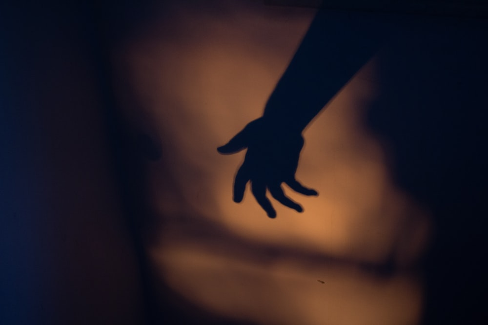 silhouette photography of human hand