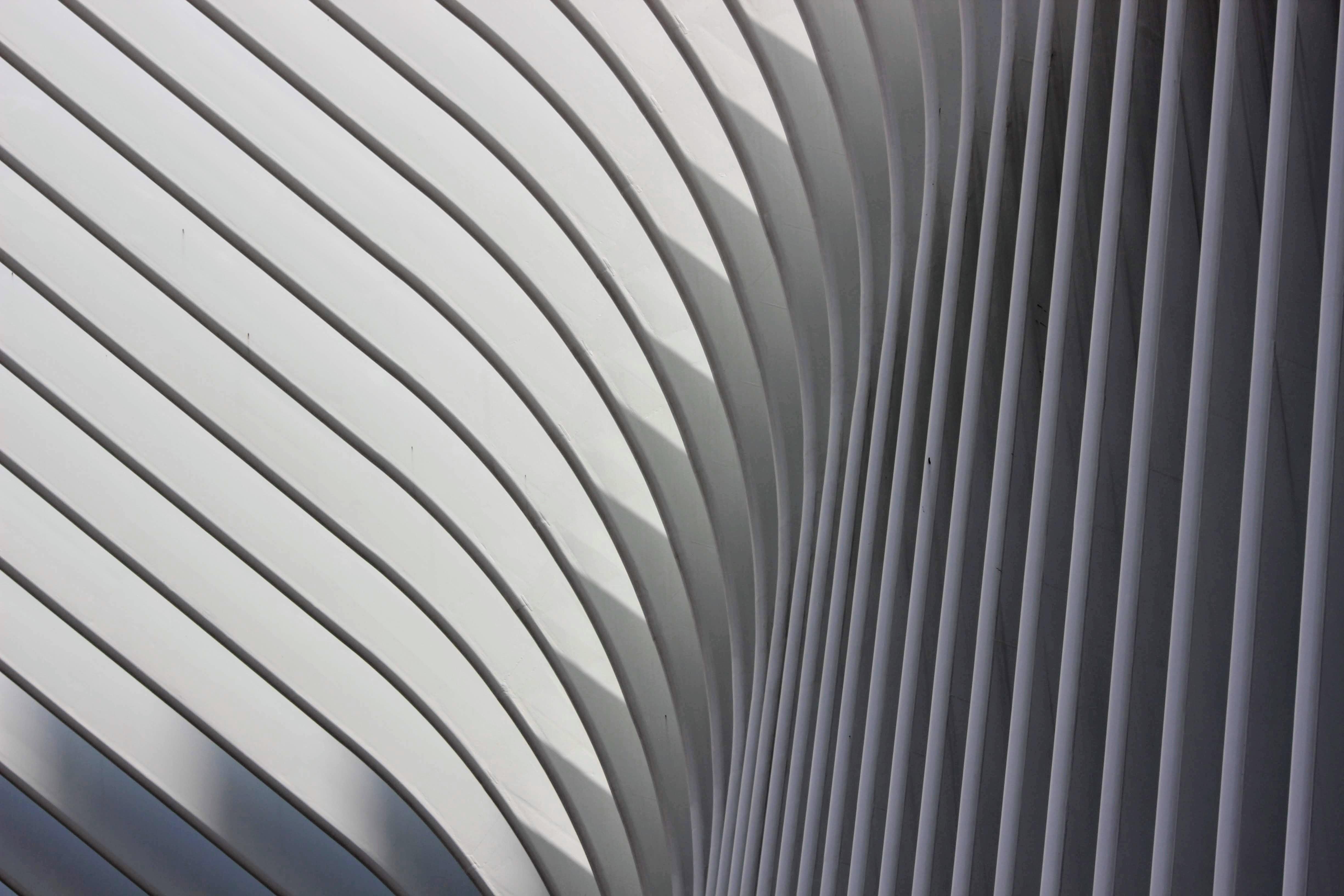 closeup photo of building