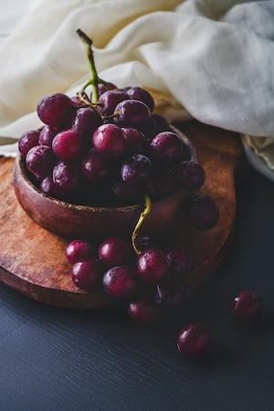 4634. Bor,szőlő, borászatok