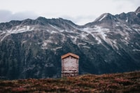 white and brown house facing mountain