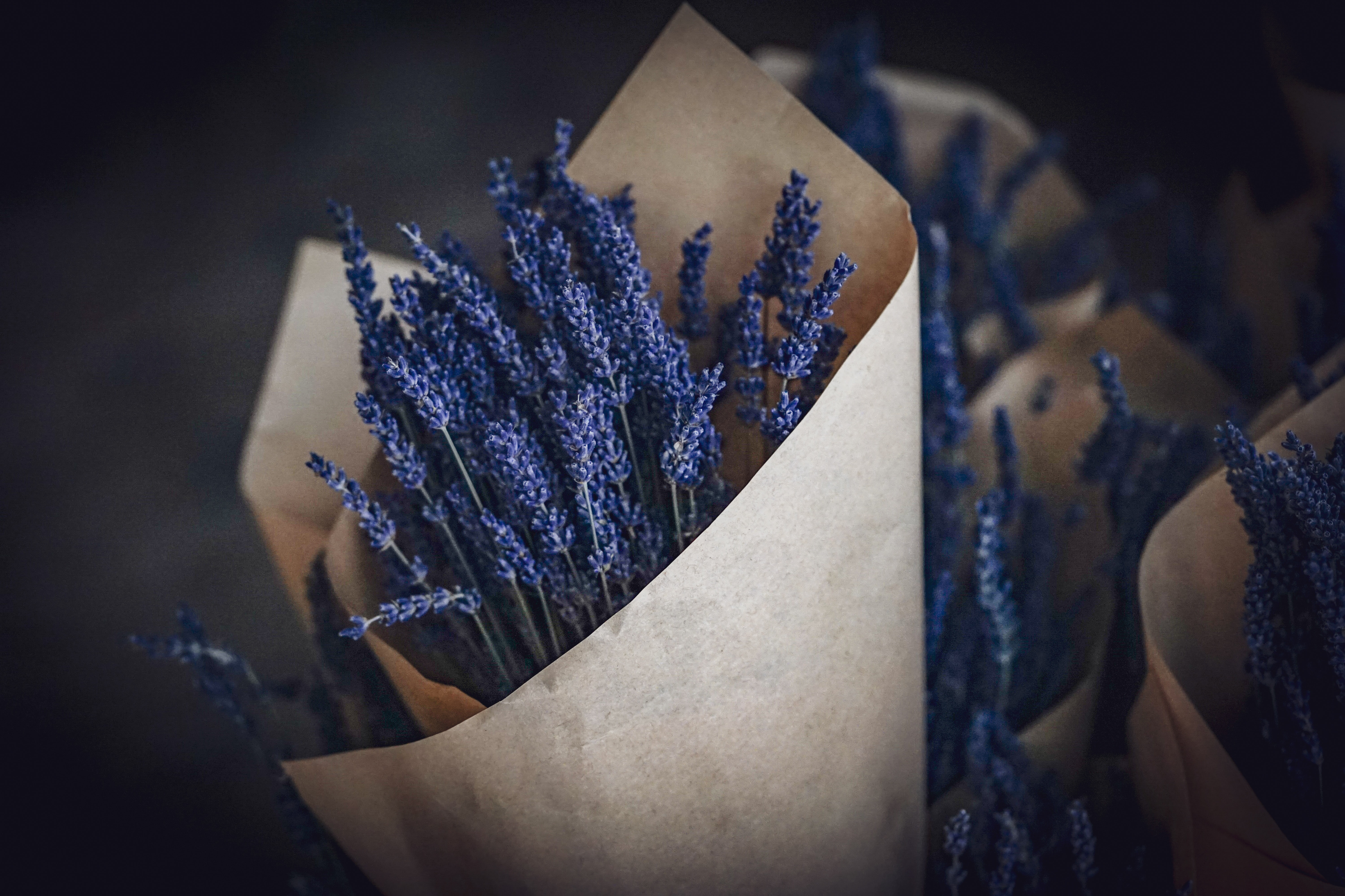 purple flowers wrapped on brown paper
