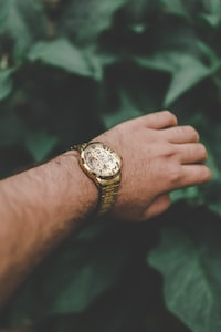 person wearing round gold-colored watch
