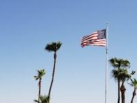 U.S. Flag on pole windy day