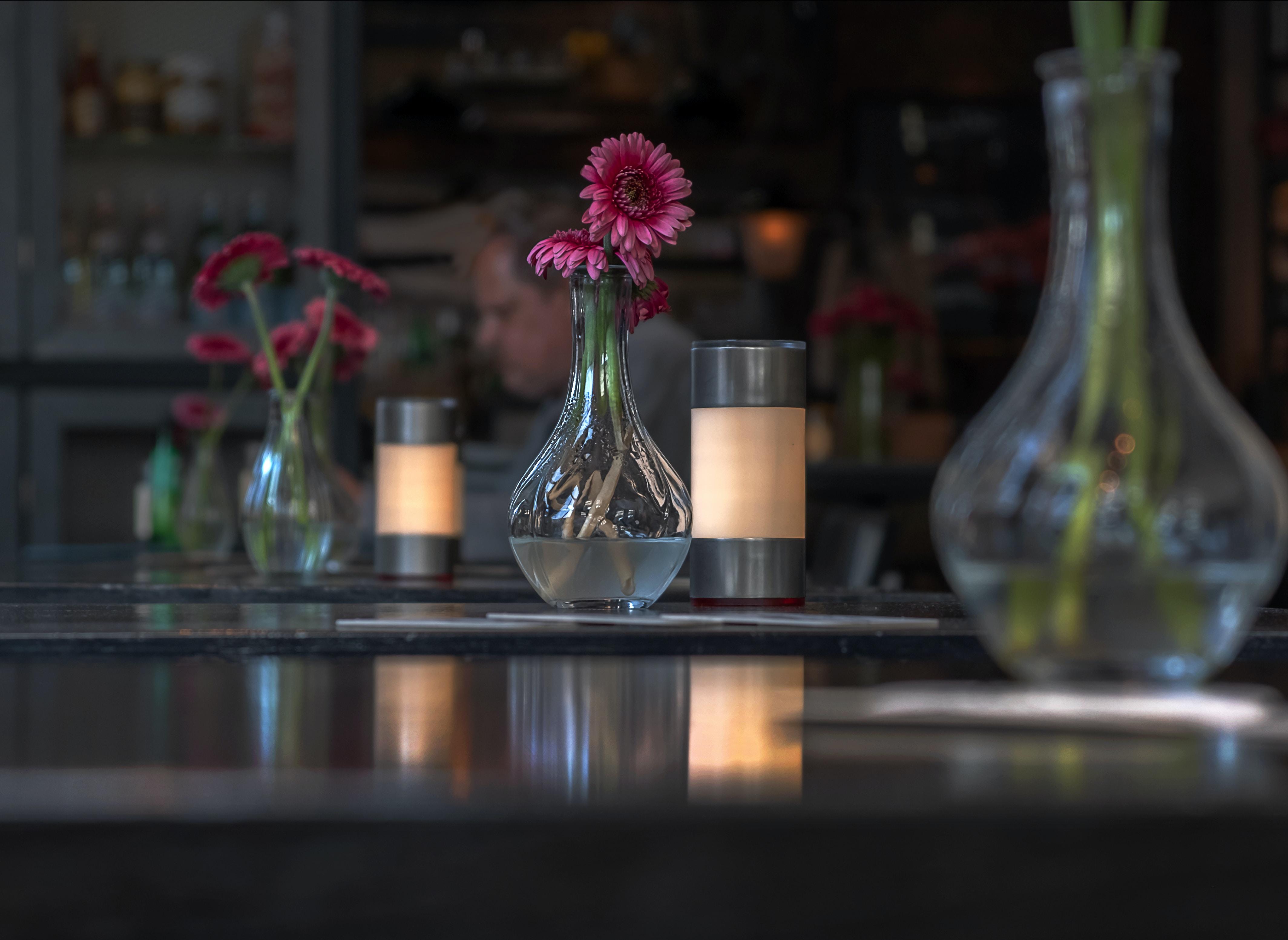 pink petaled flower in vase on tabletop