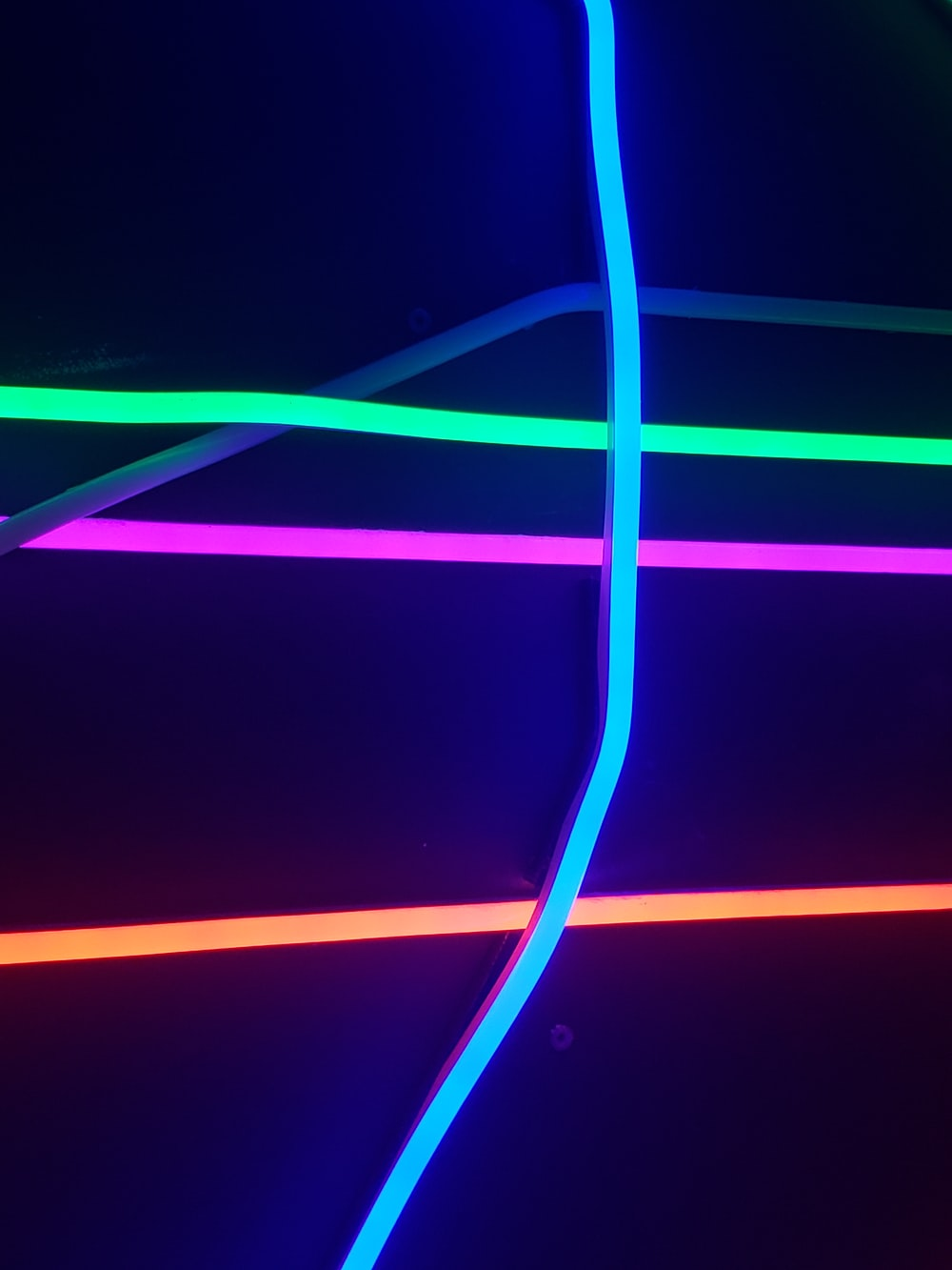 assorted-color neon lights