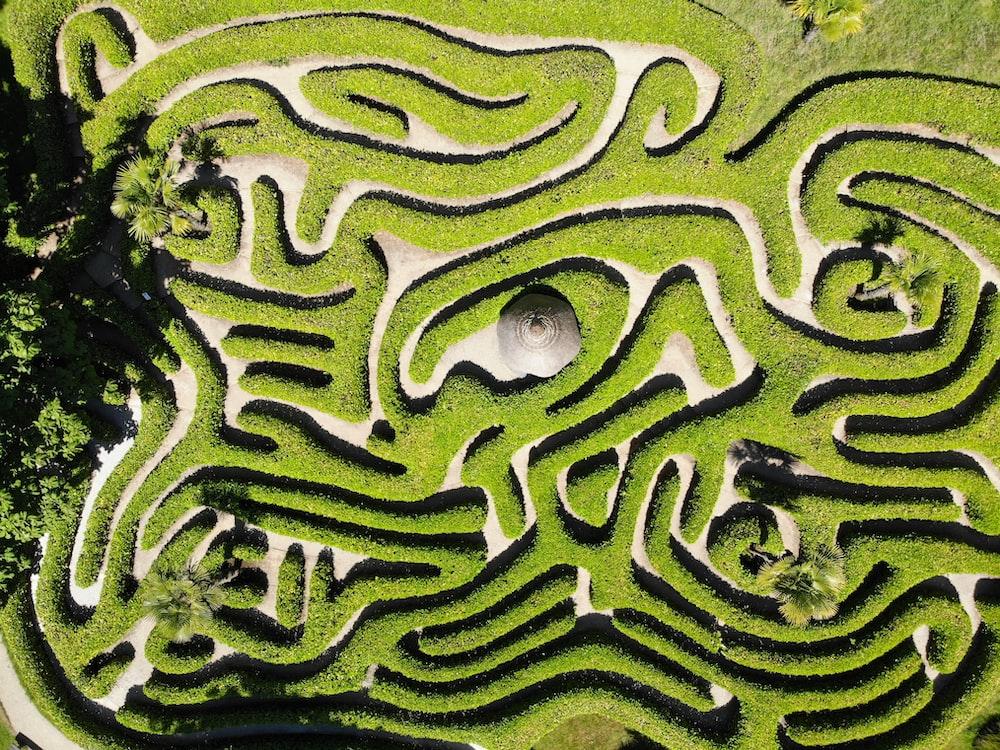 green and white maze illustration