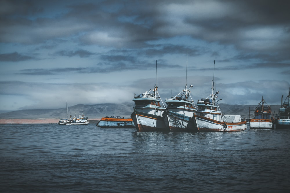 cruiser ships on ocean water under gray sky