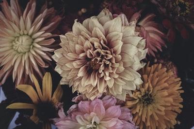 3888. Virágok