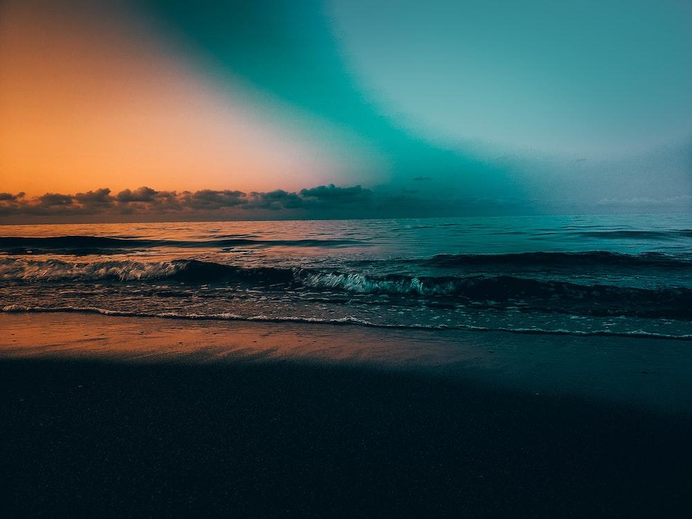 photography of ocean shore