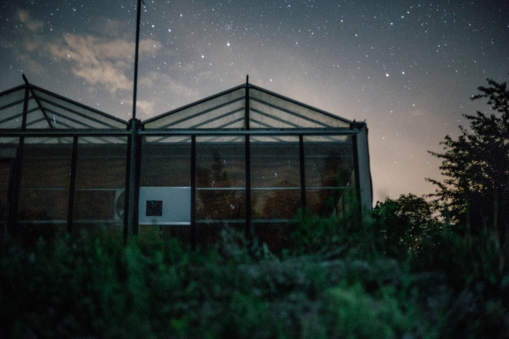 worm's-eye view photo of green house under stardust