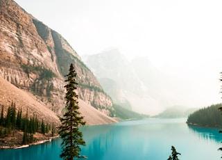 person showing lake