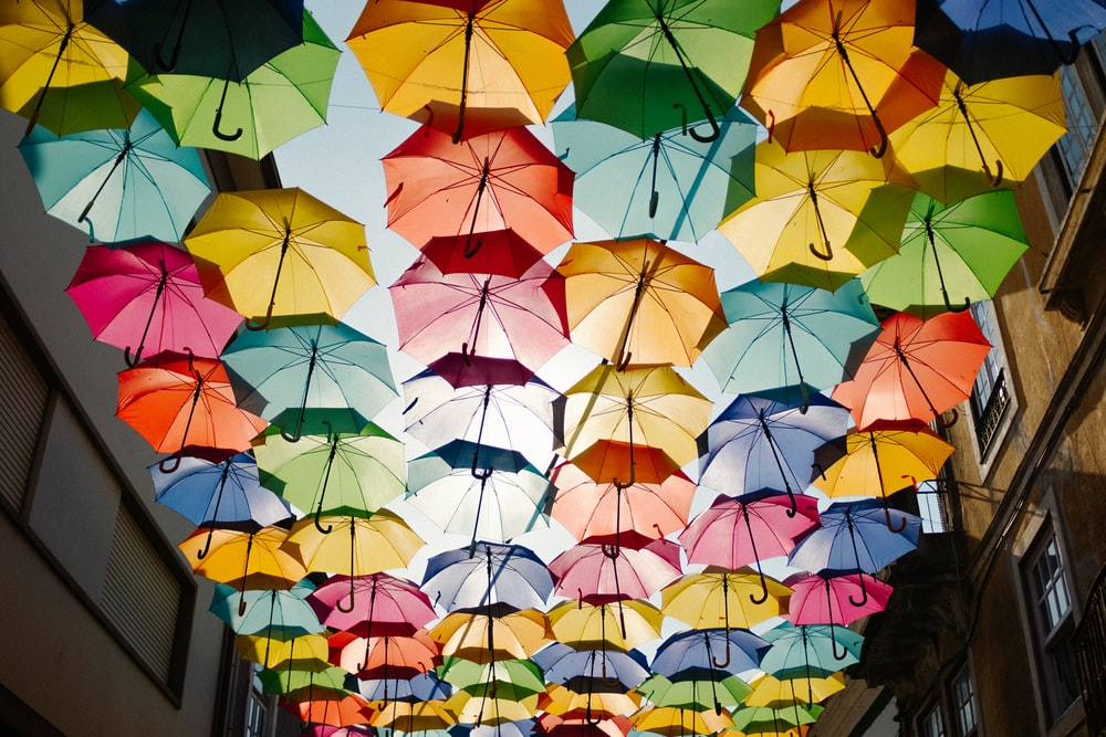 assorted-color umbrella roof design