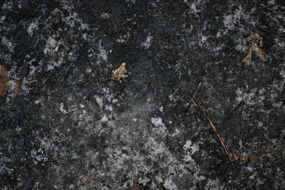black concrete floor with withered leaves