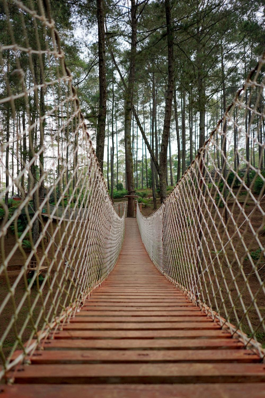 person taking photo of brown net bridge during daytime