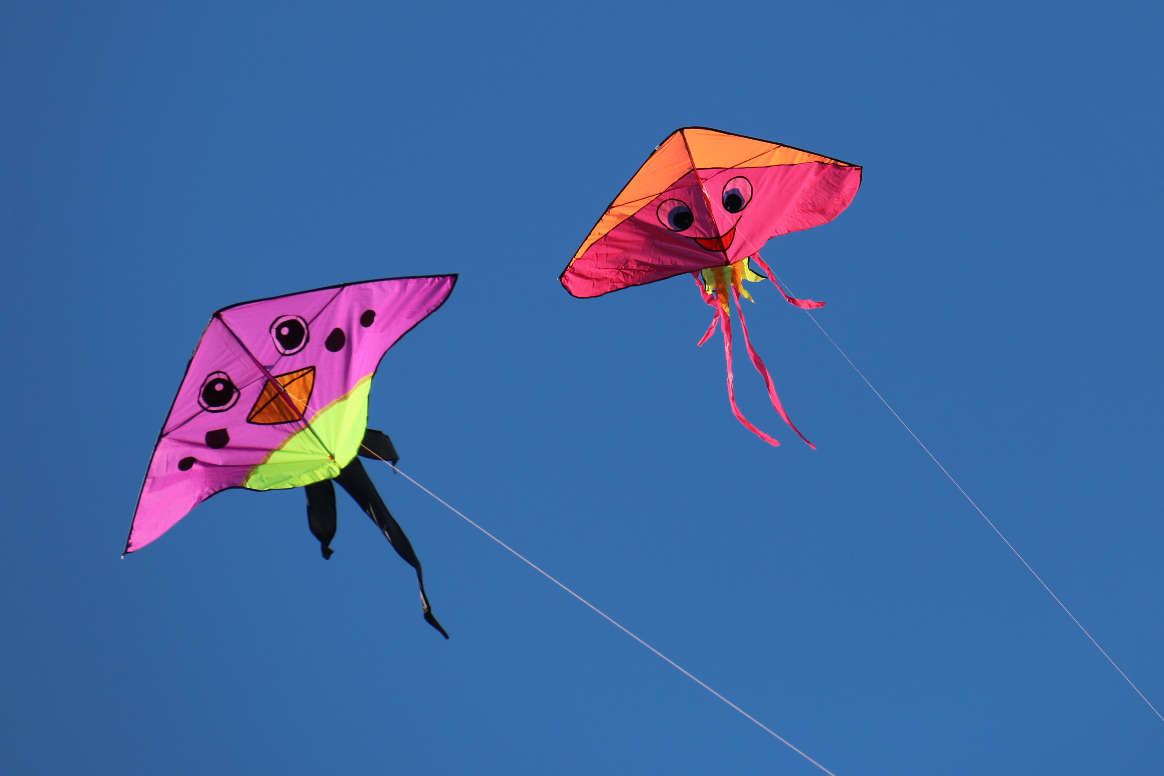 low angle photography of two pink and orange kites