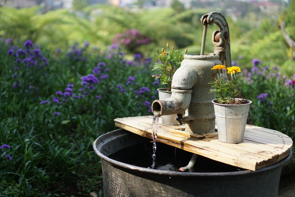 gray deep well pump surrounded by flowers during daytime