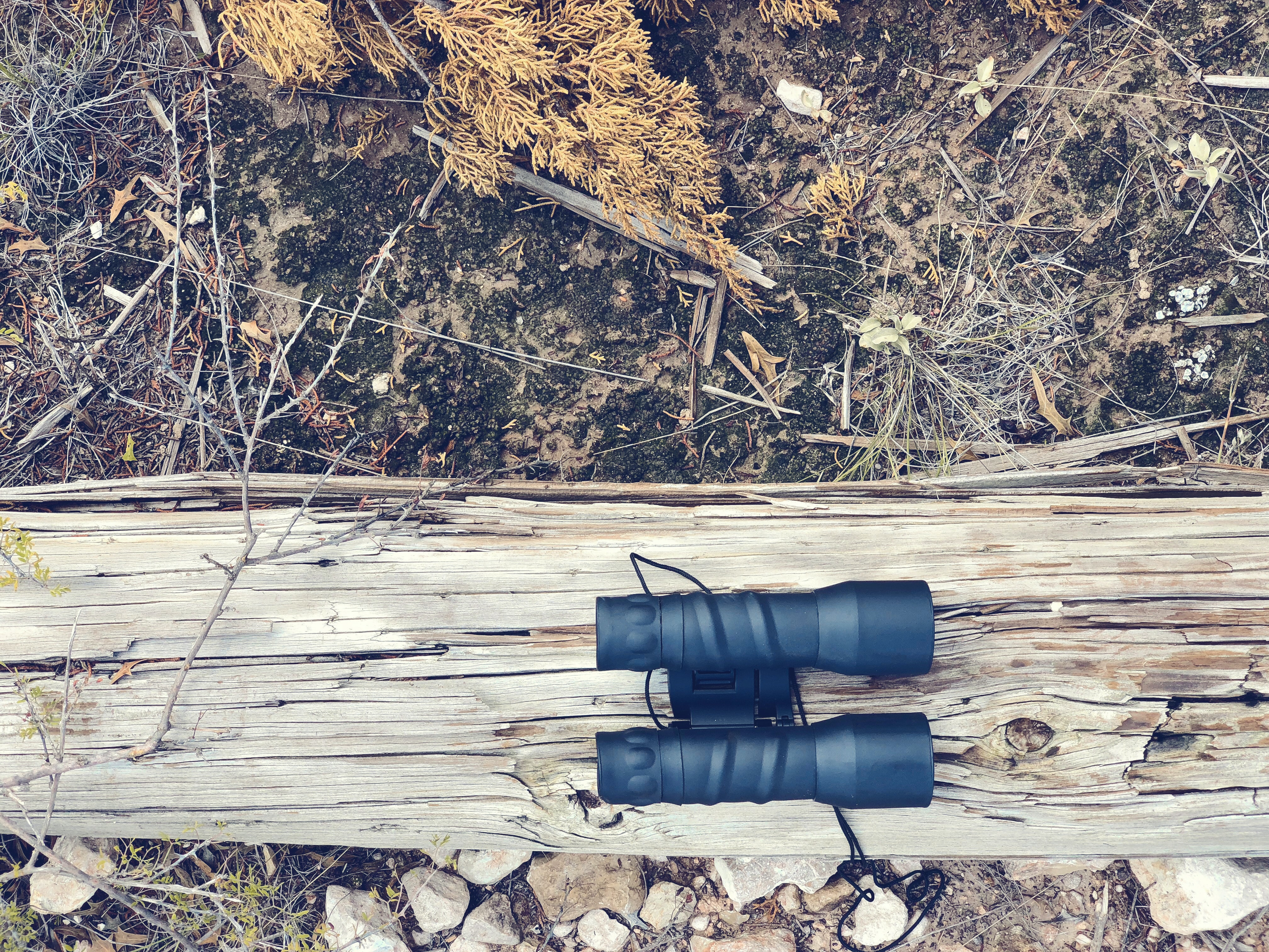 black binoculars on brown wood log