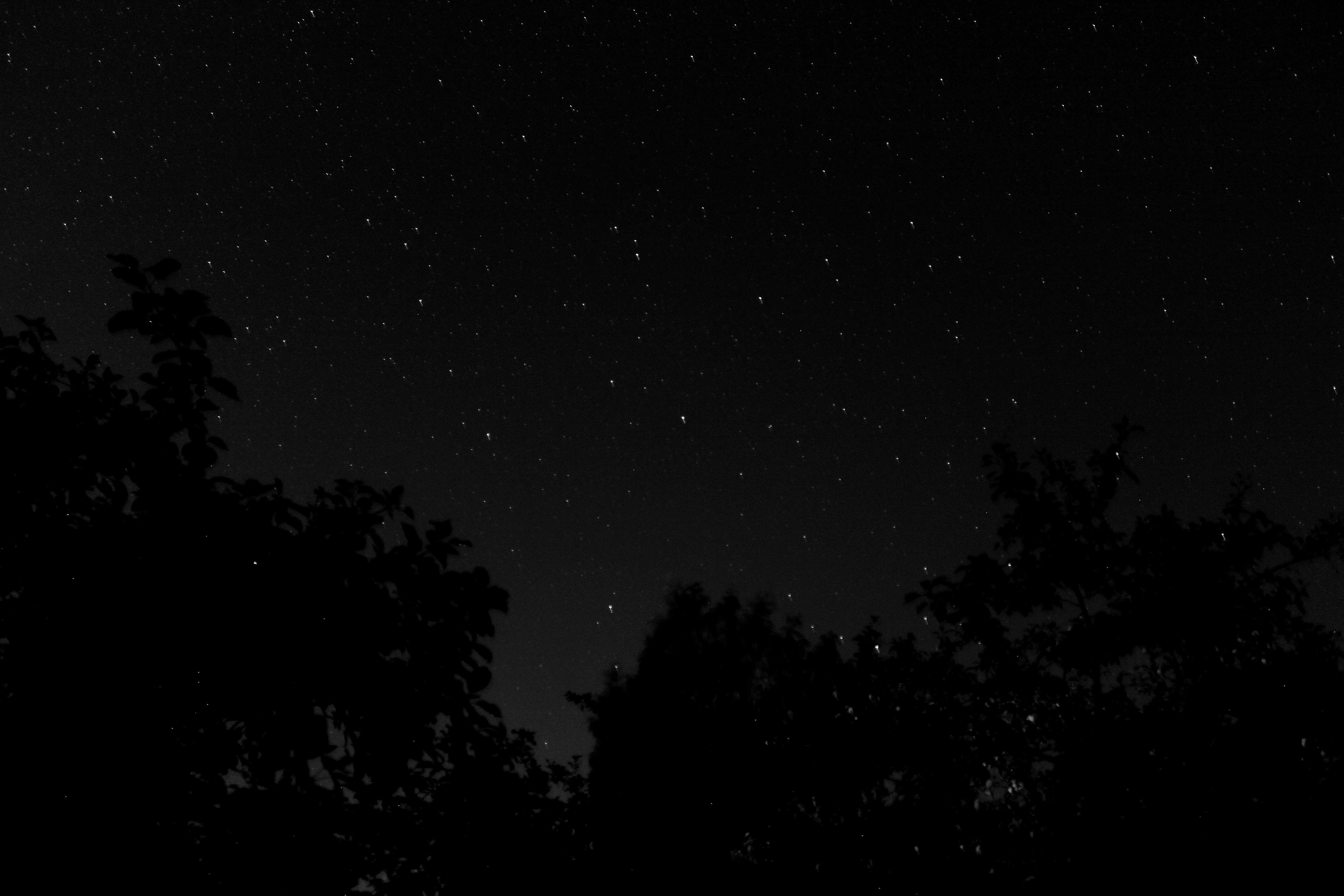 black starfield