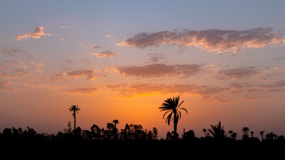 After a year of hard work, I decided to escape for a few weeks away from Paris and it is in Morocco that I stay. After a day in the streets of Marrakesh, around 08:00 PM, I see this beautiful sunset that I immortalize and that I share with you. A great wallpaper.