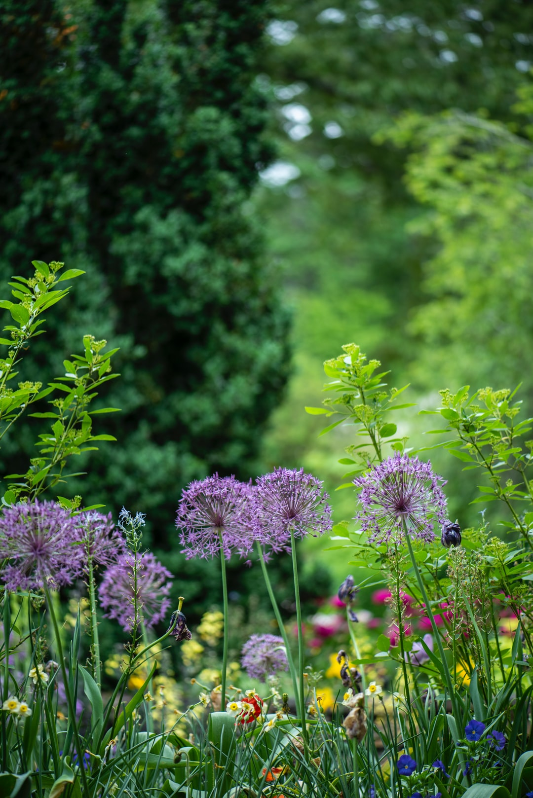 Short Course on Gardeners – Covering The Basics