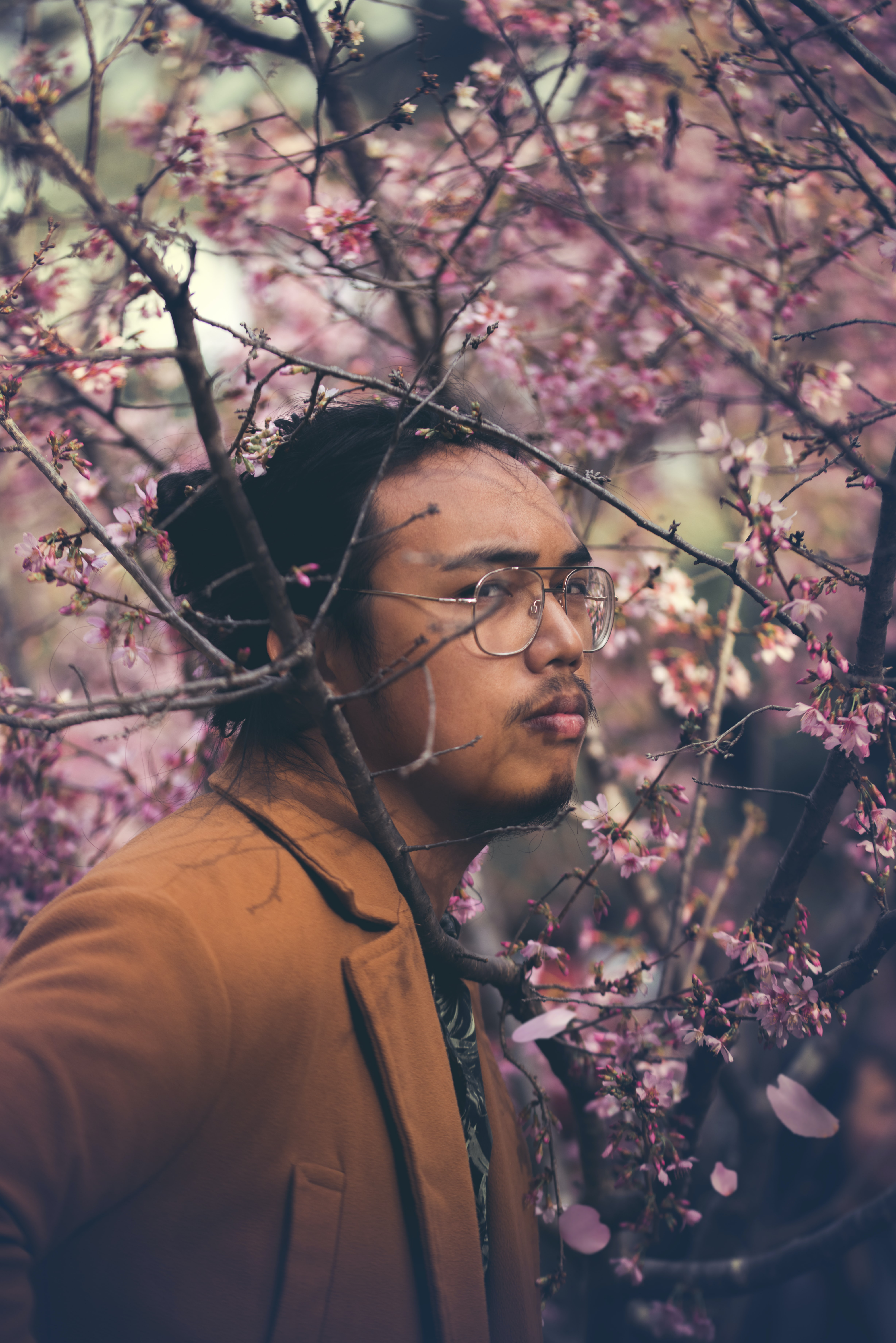 selective focus photography of man near cherry blossom