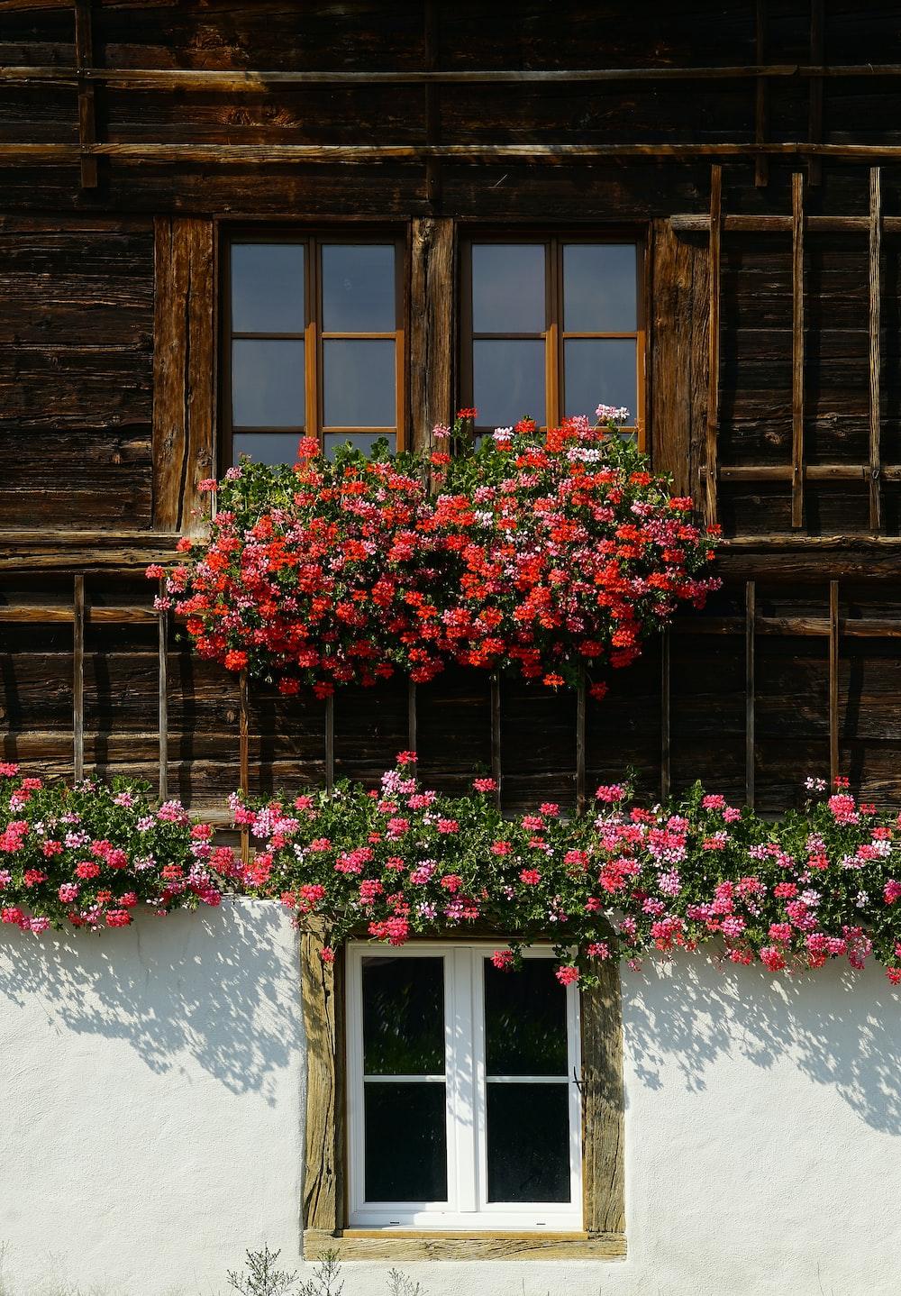 Flower Decoration Pictures | Download Free Images on Unsplash
