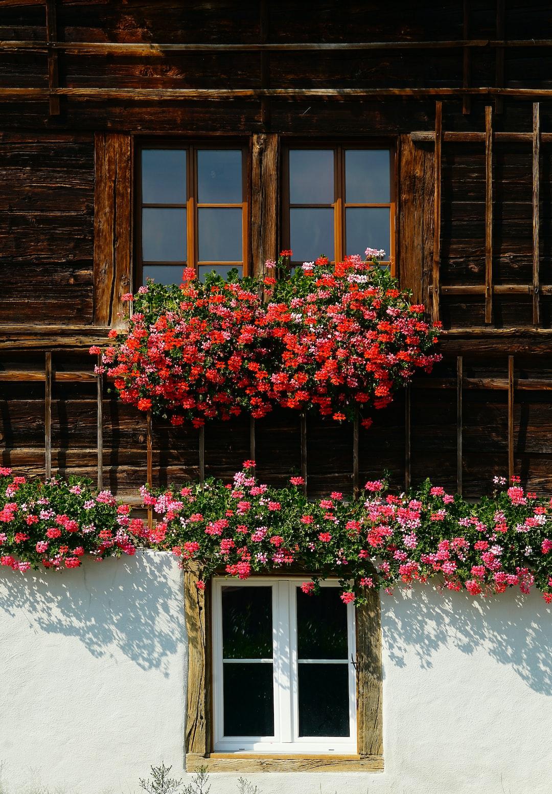 Swiss facade