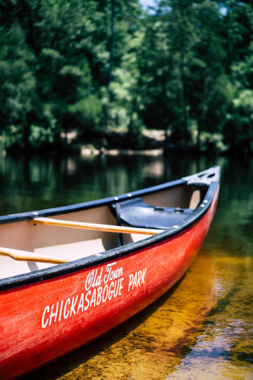 canoe boat on body of water near trees