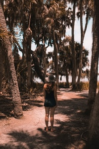 woman standing under palm trees near body of water