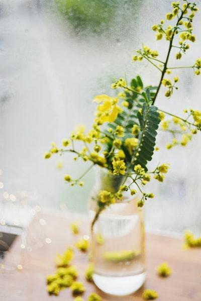 3952. Virágok