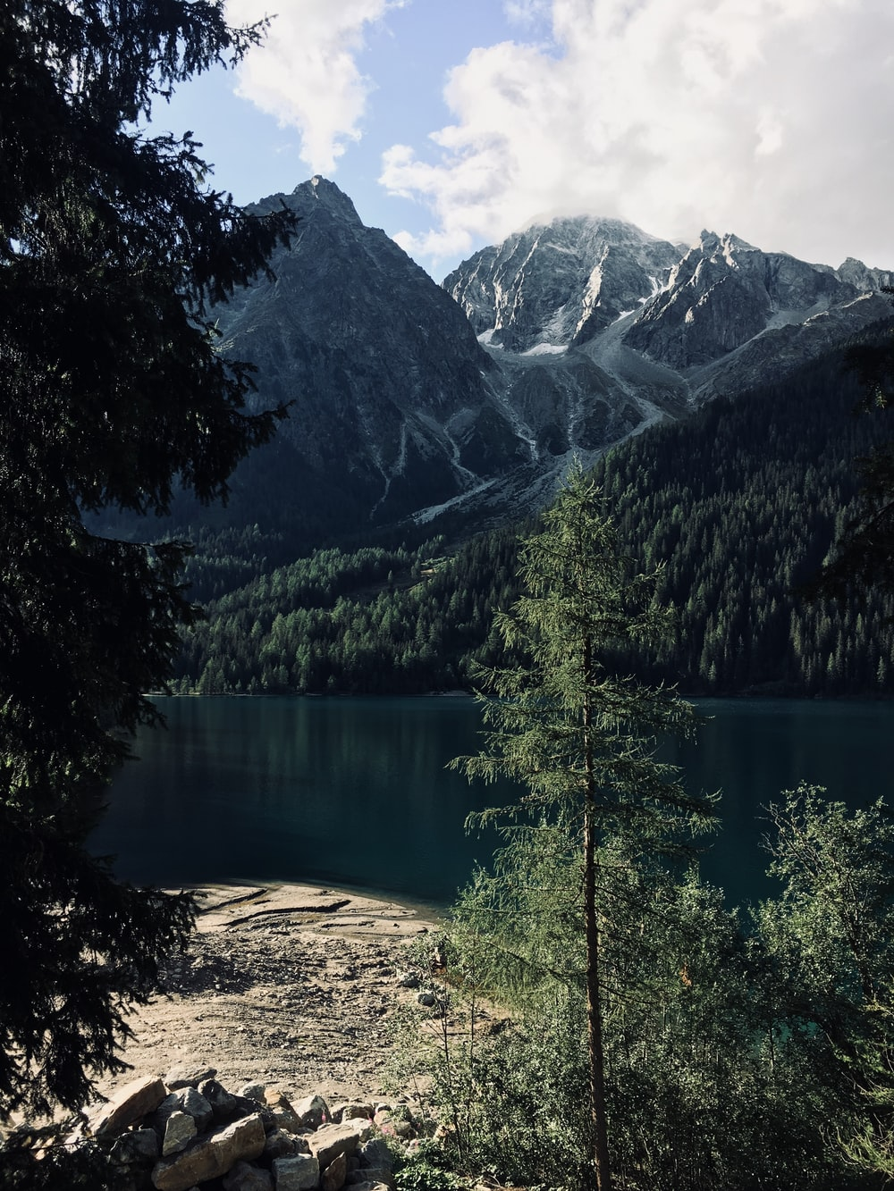 body of water and mountains surrounded by green leaf trees