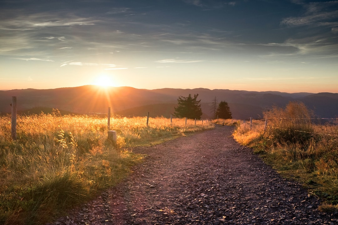 Catching the early sun as an early bird on top of Belchen Mountain, Black Forest, Germany.