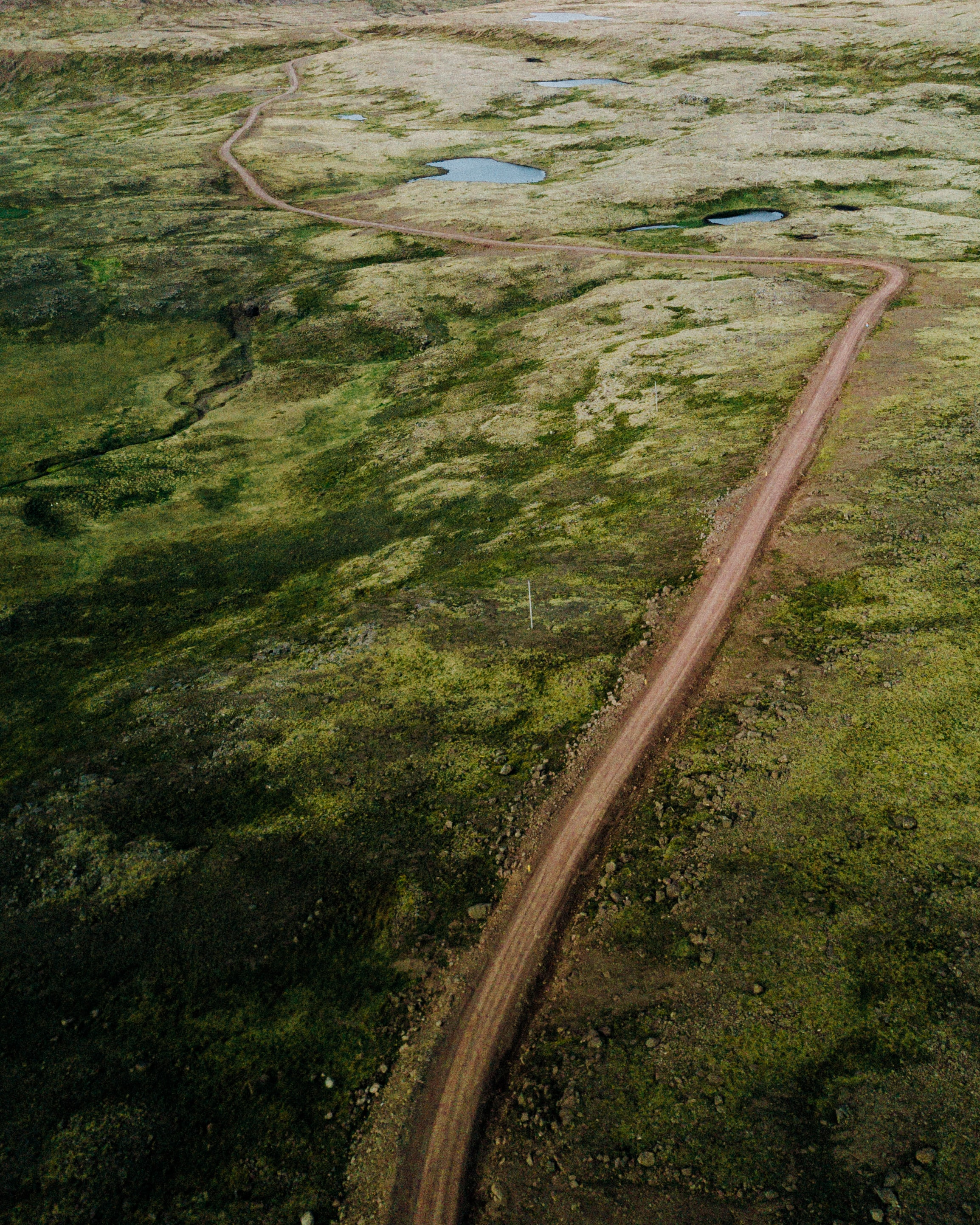 aerial view photo of road and green land area
