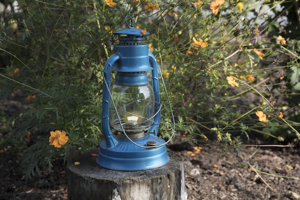 blue metal lantern on wooden tree stump