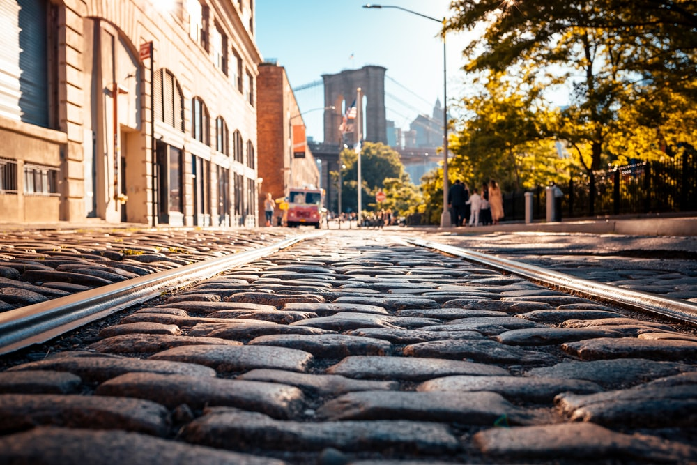 gray bricks road between tall trees and building