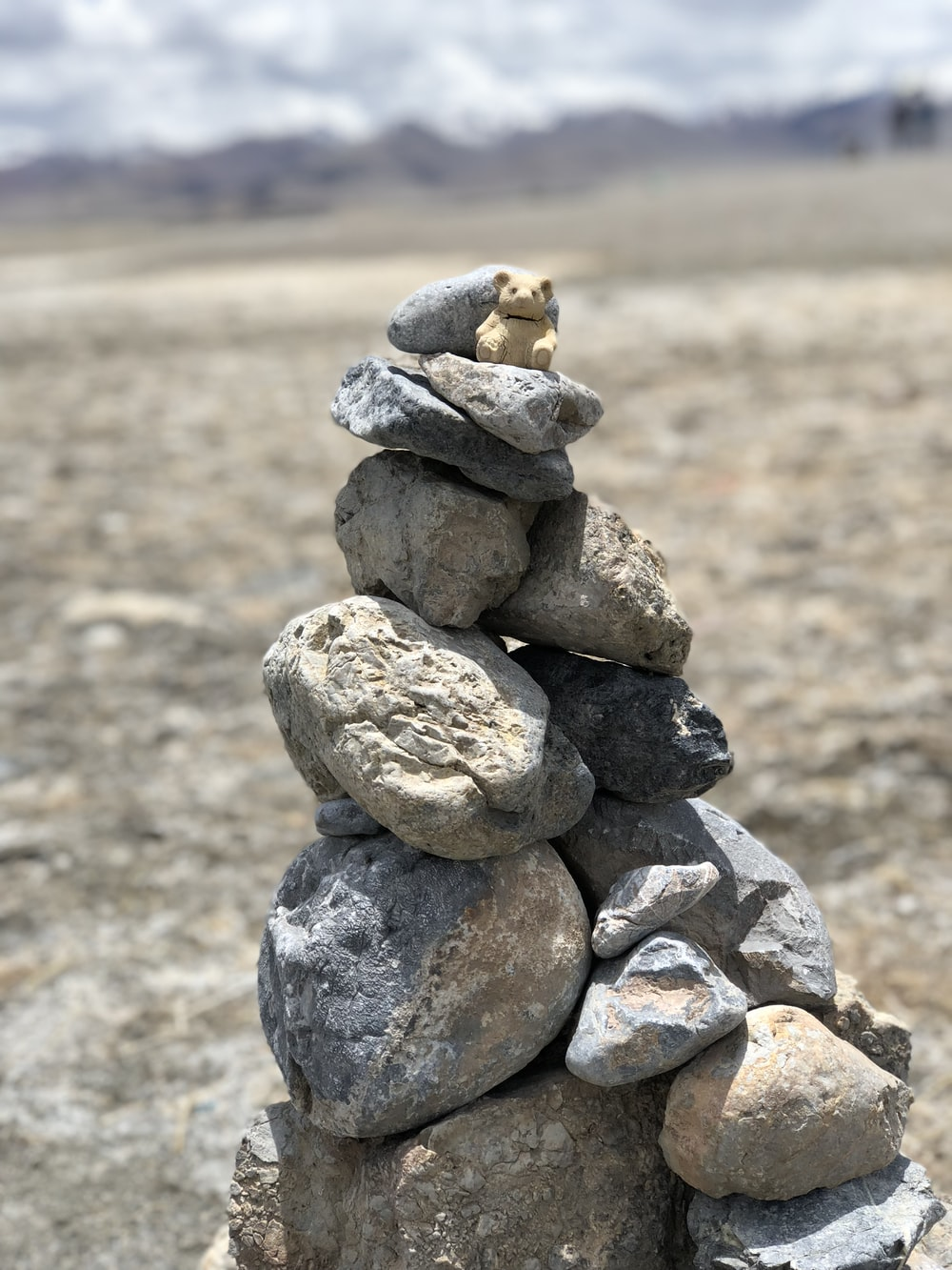 pile of rocks with brown bear at the top