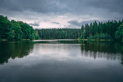 photo of lake surrounded by trees under cloudy sky during daytime