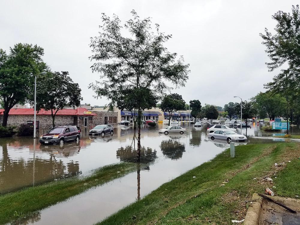 cars on flooded street