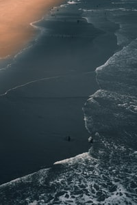 bird's-eye view photography of people on beach