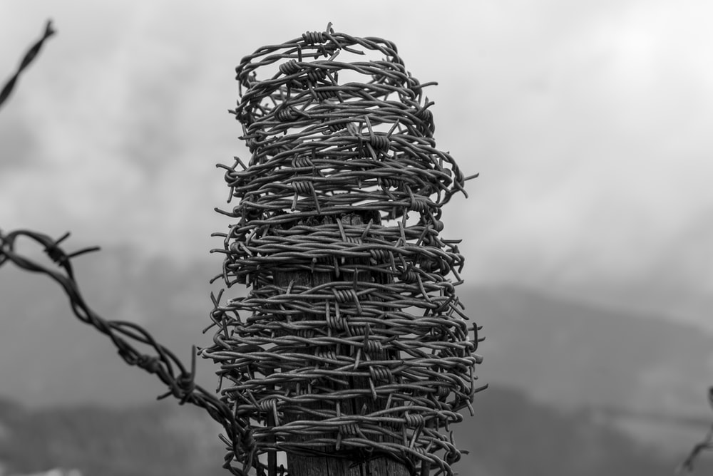 grayscale photo of barbed wire coiled on post