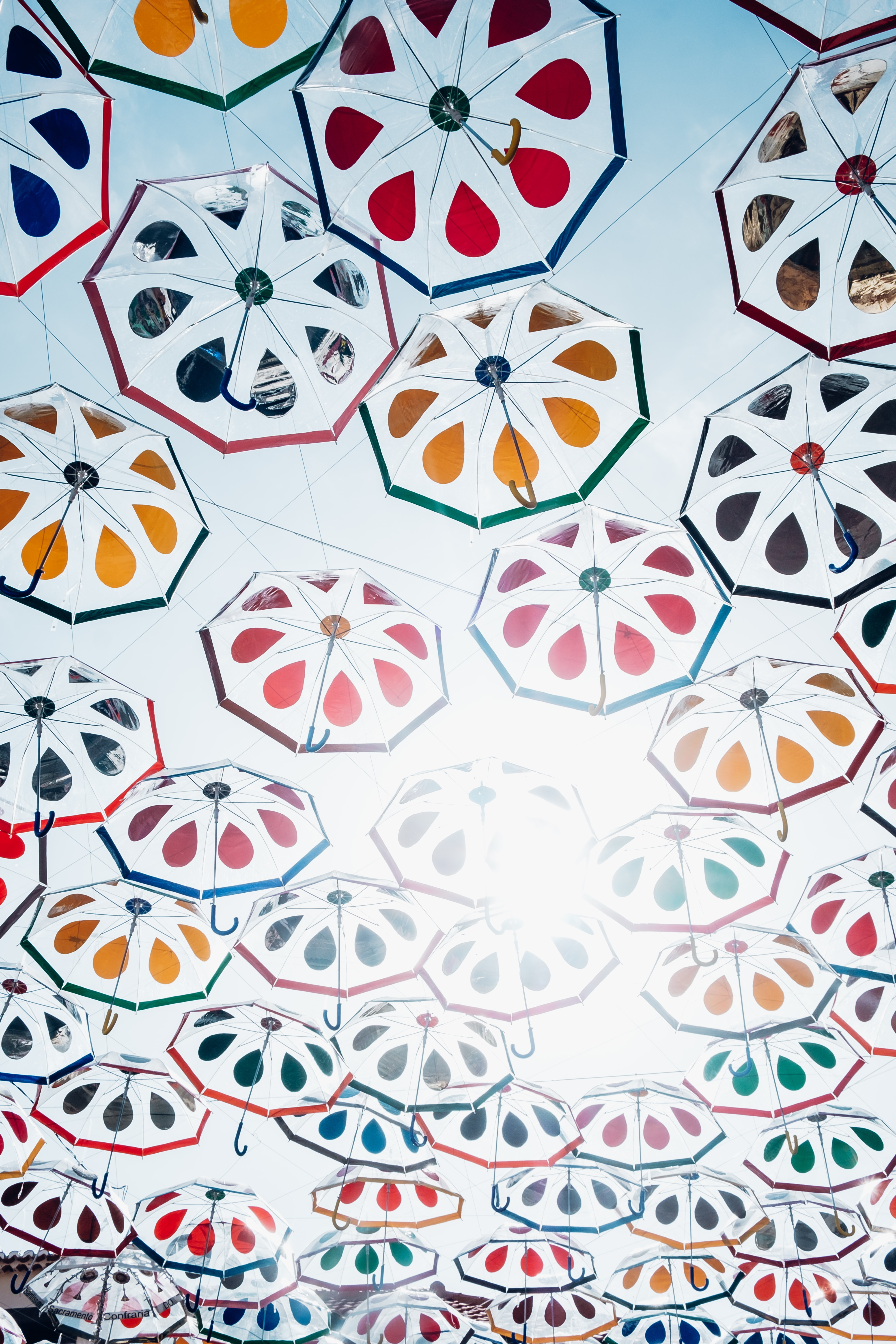 worm eye view of assorted-color of umbrella