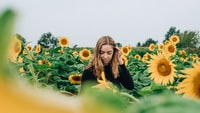 woman in black long-sleeved top in the middle of sunflower field during daytime