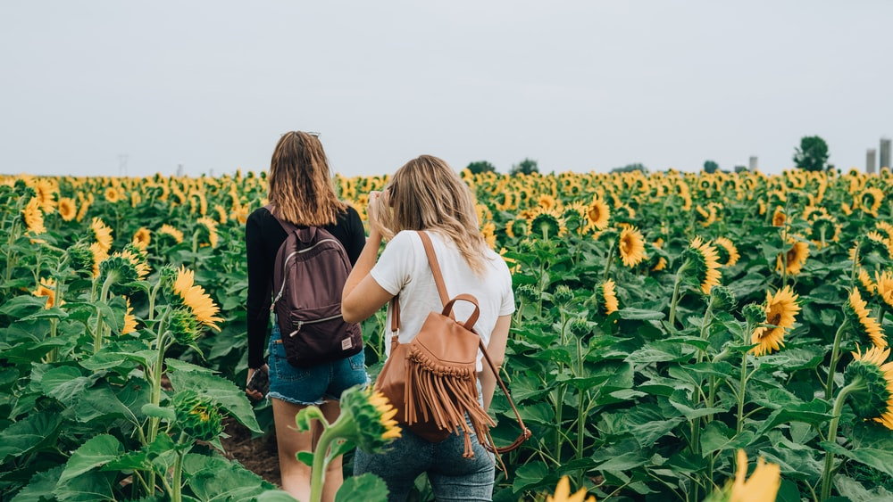 two women surrounded by sunflowers