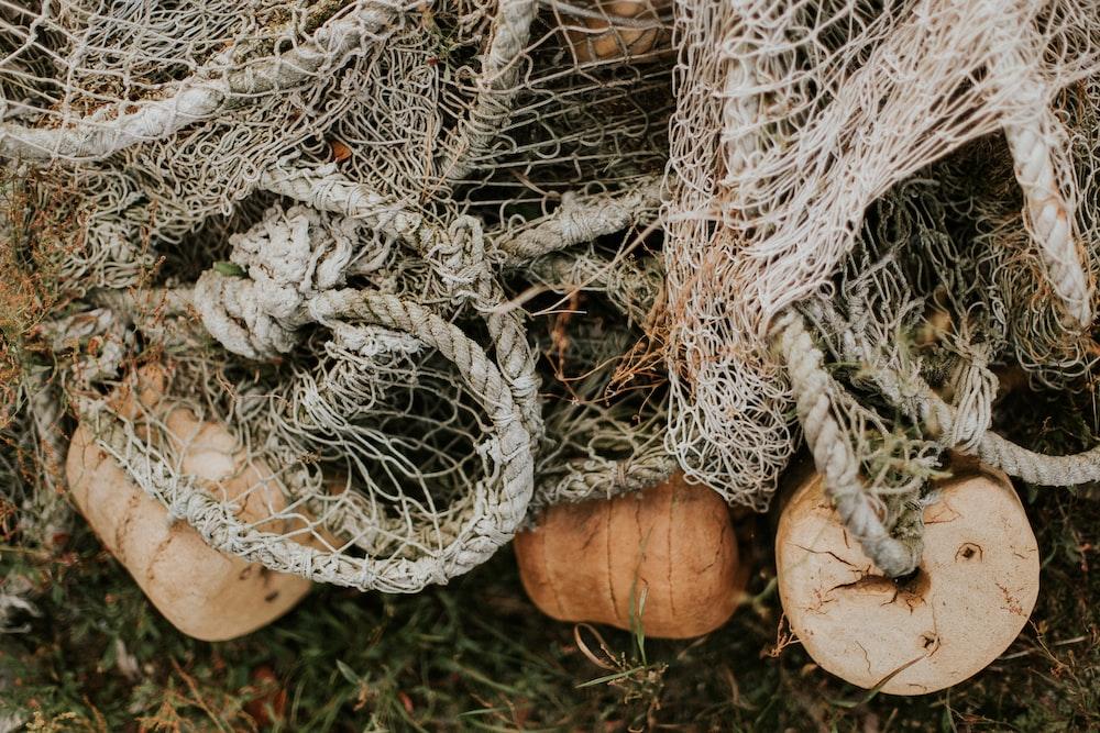 closeup photo of fish net