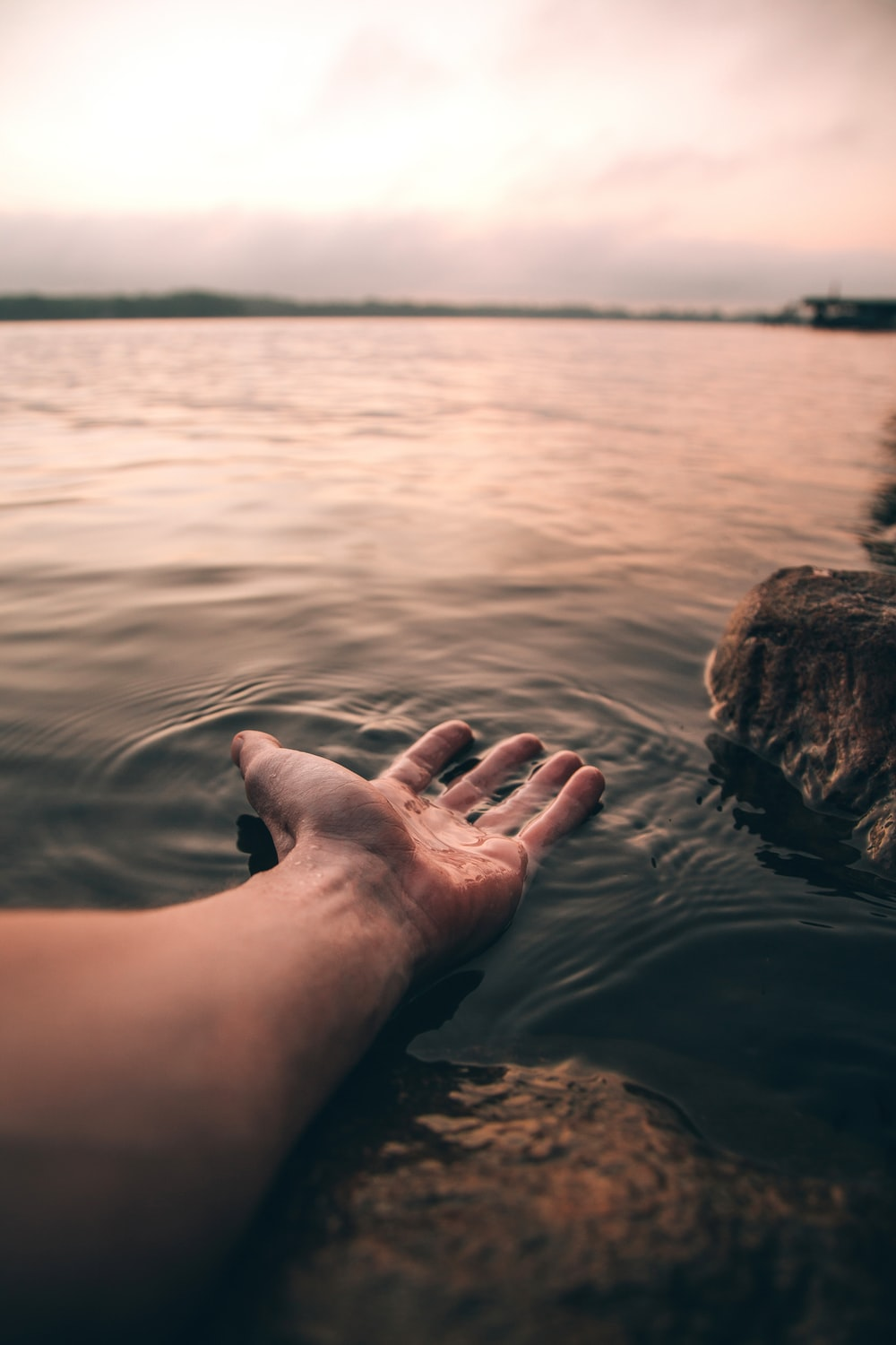 selective focus photography of person's hand on body of water